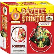 Bazele Stiintei Jucarie Educativa - Scheletul