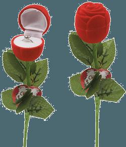 Cadou de Valentine`s Day : Trandafirul dragostei