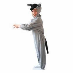 Costume de rol si de carnaval pentru copii de la 2 la 8 ani