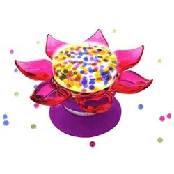 Floricica luminoasa Orbeez