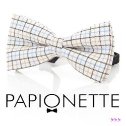 Papion Papionette Clasic
