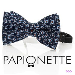Papion Papionette Aztec Blocks