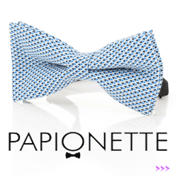 Papion Papionette Just Business