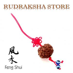 Amuleta norocoasa cu Rudraksha - Bijuterii Feng Shui ieftine cu seminte de rudrasca
