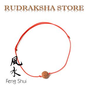 Bratara norocoasa cu seminte de Rudraksha - Bijuterii Feng Shui norocoase la preturi mici