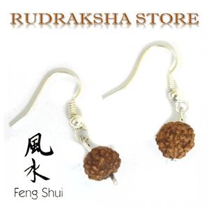 Cercei cu seminte de Rudraksha - bijuterii Feng Shui ieftine