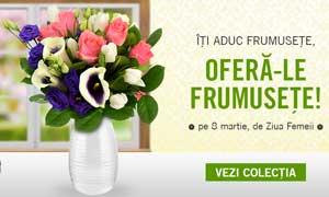 Floraria online Floria! Comanzi de acasa ajung imediat!