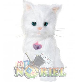 Noriel Pets Pisicuta Lili Jucarii pentru fetite in reclamele TV de Craciun