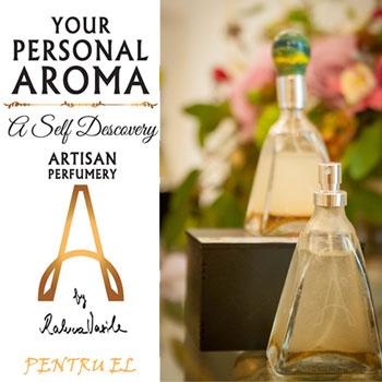 vezi in magazin pretul Parfumului barbatesc Your Personal Aroma Bois de Vétiver
