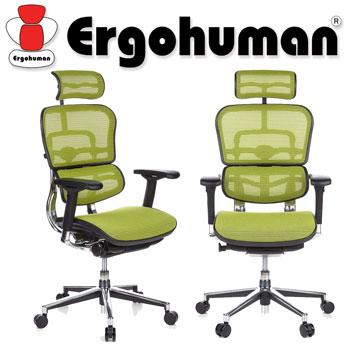 Scaun Ergohuman v2 Plus Elite, mesh verde deschis